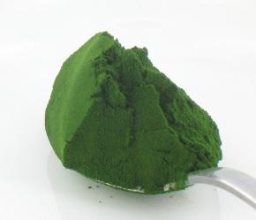 powdered chlorella